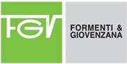 FGV Logo